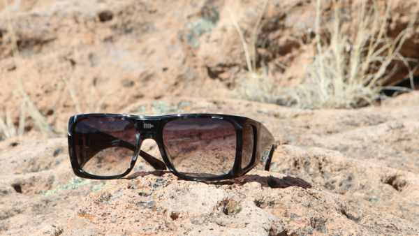 Picture 16 Mosley Tribes Chambers Sunglasses