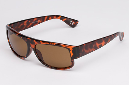 Vans Big Worm Sunglasses Vans Big Worm Sunglasses