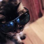 Del The Funky Homosapien x Arnette Sunglasses 01 150x150 Del The Funky Homosapien x Arnette Sunglasses